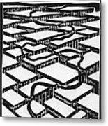 Mental Journey Metal Print by Mike Rhineheart