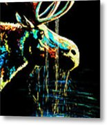 Midnight Moose Drool  Metal Print by Teshia Art