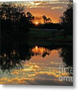 Mirror Image  Metal Print by Jinx Farmer