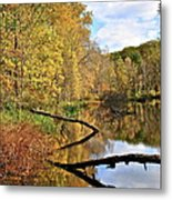 Mirror Mirror On The Floor Metal Print by Frozen in Time Fine Art Photography