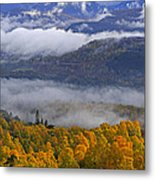 Misty Day In The Cairngorms Metal Print by Louise Heusinkveld