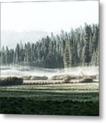 Misty Morning In Yosemite Metal Print by Jane Rix