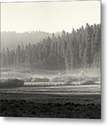 Misty Morning In Yosemite Sepia Metal Print by Jane Rix