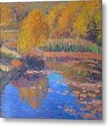 Monets Pond. Whitechapple Metal Print by Terry Perham