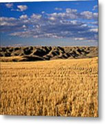 Montana   Field And Hills Metal Print by Anonymous