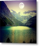 Moonlit Encounter Metal Print by Karen Wiles