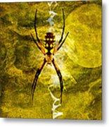 Moonlit Web Metal Print by J Larry Walker