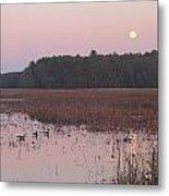 Moonrise Over Waterfowl Pond Metal Print by John Burk