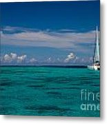 Moorea Lagoon No 16 Metal Print by David Smith
