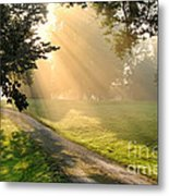 Morning On Country Road Metal Print by Olivier Le Queinec