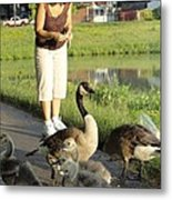 Mother Goose Metal Print by Guy Ricketts