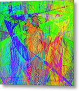 Mother Of Exiles 20130618m120 Metal Print by Wingsdomain Art and Photography