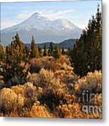 Mount Shasta In The Fall  Metal Print by Gary Whitton