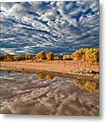 Mud Puddle Metal Print by Cat Connor