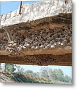 Muddy Nests Metal Print by Vivek Kumar