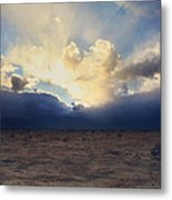 My Love For You Metal Print by Laurie Search