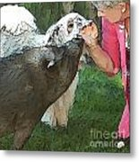 My Pig And Dog Friends Metal Print by Artist and Photographer Laura Wrede