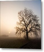 Mystic Morning Metal Print by Davorin Mance