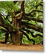 Mystical Angel Oak Tree Metal Print by Louis Dallara