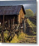 Napa Morning Metal Print by Bill Gallagher
