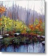 Nature Center Pond At Warner Park In Autumn Metal Print by Janet King