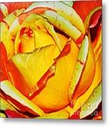 Nature's Vivid Colors Metal Print by Kaye Menner
