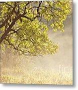 Nebulous Tree Metal Print by Heiko Koehrer-Wagner