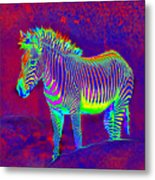 Neon Zebra Metal Print by Jane Schnetlage