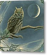 New Moon   Metal Print by Paul Krapf