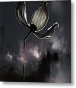Nights I Wrote  Metal Print by JC Photography and Art