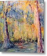 Nlr Lake Study  Metal Print by Robin Miller-Bookhout
