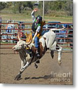 Not His First Rodeo Metal Print by Kris Wolf