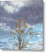 Oak And Clouds Metal Print by Jymme Golden
