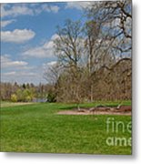 Old Elm Haverford College Metal Print by Kay Pickens