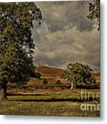 Old John Bradgate Park Leicestershire Metal Print by John Edwards