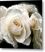 Old Lace Rose Bouquet Metal Print by Jennie Marie Schell