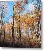 Old Rag Hiking Trail - 121258 Metal Print by DC Photographer