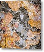 Old Wall Abstract Metal Print by Elena Elisseeva