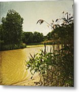 Old Woman Creek  Metal Print by Shawna Rowe
