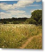 On The Summer Meadow II. Russia Metal Print by Jenny Rainbow