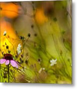 Once Upon A Time There Lived A Flower Metal Print by Mary Amerman