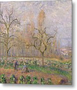 Orchard At Pontoise Metal Print by Camille Pissarro