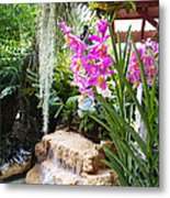 Orchid Garden Metal Print by Carey Chen