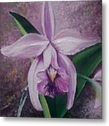 Orchid Lalia Metal Print by Karin  Dawn Kelshall- Best