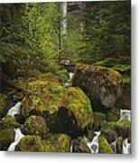 Oregon's Watson Falls Metal Print by Andrew Soundarajan