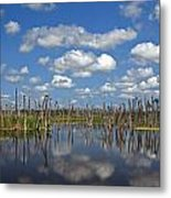 Orlando Wetlands Cloudscape 3 Metal Print by Mike Reid