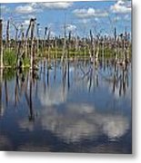 Orlando Wetlands Cloudscape 5 Metal Print by Mike Reid