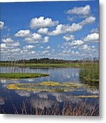 Orlando Wetlands Park Cloudscape 4 Metal Print by Mike Reid