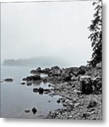 Otter Cliffs Metal Print by Joann Vitali
