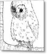 Owl Baby Metal Print by Callan Rogers-Grazado
